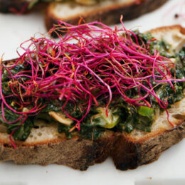 Vegetarisk Toast med grönkålsstuvning